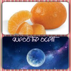 Did you guess Mandarin Moon? I love the Orange scent! contact me for more information: https://darmedcalf.scentsy.us/