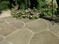 These Flagstones Are Set On A Concrete Base. The Stones Have Not Budged In  13