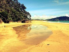 Hot Water Beach, Coromandel, New Zealand; During low tide, hot water filters up from beneath the sand and creates a hot water pool for lounging!