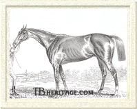 Panique Was the winner of the 1884 Belmont Stakes
