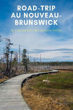 Backpacking Canada, Canada Travel, North And South, New Brunswick Canada, Canada Holiday, Visit Canada, Destinations, Blog Voyage