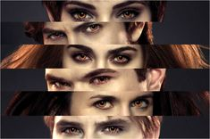 The many faces of the Cullens