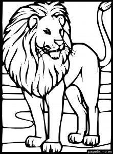 Dibujo Leon Para Colorear Ninos Paginas Para Colorear De Animales Leon Para Colorear Fotos De Leon