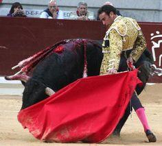 Enrique Ponce: http://www.toroticket.com/73-enrique-ponce