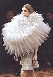"""Extreme Elizabethan collar, another """"What were they thinking"""" moment!!"""