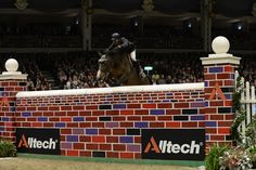 Luca Moneta wins Olympia puissance [video] Luca is a Parelli student!