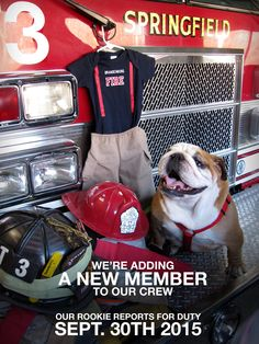 Our firefighter baby announcement. With mater Firefighter Pregnancy Announcement, Firefighter Baby, Baby Announcement Pictures, New Baby Announcements, Baby Pictures, Baby Photos, Baby Bear Cub, Newborn Quotes, Baby Chickens