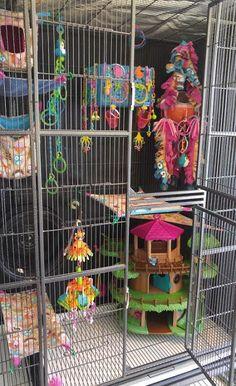 Custom Made Sugar Glider Toys Sugar Glider Pet, Sugar Glider Cage, Sugar Gliders, Diy Bird Cage, Bird Cages, Rabbit Cages, Pet Rat Cages, Pet Cage, Sugar Glider Bonding Pouch