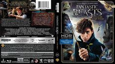 Grátis Gtba: Fantastic Beasts And Where To Find Them 4K (2016) ...