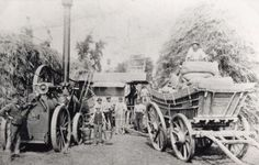 A Victorian Threshing Gang. They travelled from farm to farm to thresh the corn © The Village - Church Farm Skegness