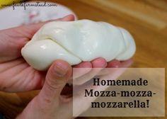 Easy Homemade Mozzarella from the Faulk Farmstead!  Yum! #homesteading