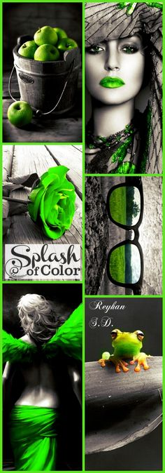 '' Color Splash ~ Green '' by Reyhan S.D.