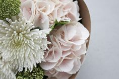 Floral + Botanical Delivery - All The Frills