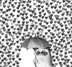 grumpy cat. it's raining on his grump parade.