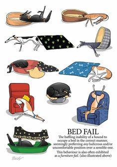 Bed fail