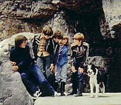famous five 1978 - Google Search The Famous Five, Enid Blyton, Tv Series, Nostalgia, Couple Photos, Dogs, Google Search, Childhood, Couple Shots