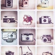Este estampado é para todos os amantes de fotografia. As câmeras de filme voltam para ficar e dar um toque vintage mas muito atual à decoração do seu espaço. Este tecido é ideal para umas almofadas ou para projetos de artes manuais.