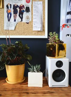 Style Girlfriend office // makeover Homepolish // plants The Sill