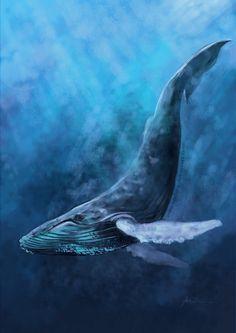 Humpback Whale by endzi-z on @DeviantArt