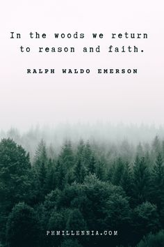 Tree Quotes, Quotes About Trees, Quotes About Rain, Human Nature Quotes, Spiritual Quotes, Into The Woods Quotes, Walk In The Woods, Forest Quotes, Mountain Quotes
