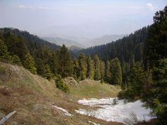 Dalhousie-Dainkund Peak - Himachal Pradesh - India