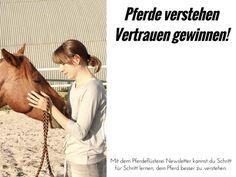 Die Wahrheit im Pferdetraining: Es gibt keinen Trick. Es gibt nur euch & euer Pferd. Das ist der Weg zur Einheit mit dem Pferd - wie? Tipps gibts im Artikel