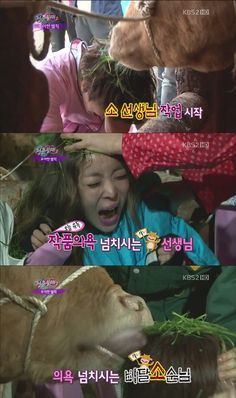 'Invincible Youth 2