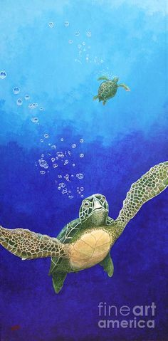 Sea Turtles Painting by Fred-Christian Freer - Sea Turtles Fine Art Prints and Posters for Sale