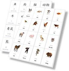 Learn Chinese vocabulary with printable flashcards! Chinese characters are in both handwriting and print style. All illustrations come with pinyin and English. Printable Flashcards, Flashcards For Kids, Printable Cards, Cantonese Language, Chinese Language, Mandarin Lessons, Learn Mandarin, Chinese Alphabet, Alphabet For Kids