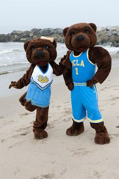 Joe and Josephine Bruin, our mascots, at the beach.  When I was Joe Bruin there were no beach visits!