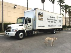 The MrBoxOnline / A&M delivery truck with our dog Milton!