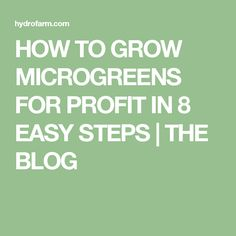 HOW TO GROW MICROGREENS FOR PROFIT IN 8 EASY STEPS   THE BLOG
