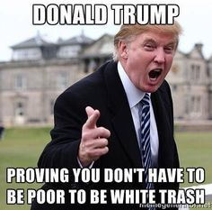 Funny Donald Trump Images to Make You Laugh and Cry: White Trash Memes Humor, Caricatures, Donald Trump Funny, Funny Quotes, Funny Memes, Funny Nfl, Funny Tweets, Life Quotes, Thing 1