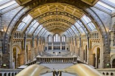 Here is a photograph taken from the Natural History Museum.  Located in London, England, UK.