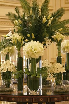 Elegant and simple white and green amaryllis, calla lilies, anthurium, and lilies.