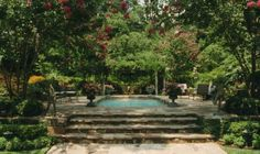Brooks Pool Company   Secluded Garden Paradise