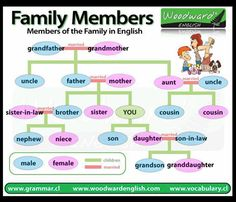 VOCABULARY: FAMILY MEMBERS