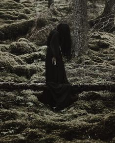 Season Of The Witch, Seasons, Artist, Nature, Seasons Of The Year, Naturaleza, Amen, Artists, Scenery
