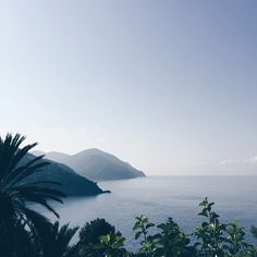 We're in Liguria, Italy! It's beyond beautiful here. Looking very much forward to settling into vacation mode and exploring the area for the next ten days