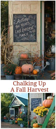 The first harvest of fall around the potting shed with mums, pumpkins and a chalkboard door quote | homeiswheretheboatis.net