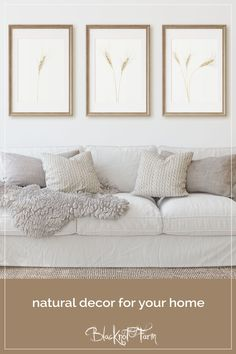 Printable wall decor helps create a fresh feel in your home. Available in many sizes this download of natural cream wheat can be printed at home or your local print shop. Many sizes available. Come visit Blacknot Farm on Etsy for more decor, design and gift ideas. #blacknotfarm #printabledecor #farmhouseaesthetic #modernfarmhouse #botanicalartprint #modernnaturalprint #naturephotography #bohodecor Photo Wall Decor, Home Decor Wall Art, Polaroid Wall, Nature Prints, Art Prints, Photo Printing Services, Modern Farmhouse Decor, Home Decor Inspiration, Decor Ideas