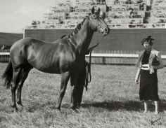 HORSE Marion du Pont Scott with Battleship, a son of Man o' War who became the first American-bred horse to win the Grand National at Aintree Thoroughbred Horse, Dressage, Clydesdale Horses, Breyer Horses, All The Pretty Horses, Beautiful Horses, Sport Of Kings, Vintage Horse, Racehorse