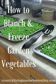 Freeze Garden Vegetables - Peas, Carrots, Beans How to Blanch & Freeze Garden Vegetables. Enjoy the great taste all winter long!How to Blanch & Freeze Garden Vegetables. Enjoy the great taste all winter long! Freezing Fruit, Freezing Vegetables, Fruits And Veggies, Gardening Vegetables, Garden Vegetable Recipes, Freezing Carrots, Vegetable Ideas, Vegetable Storage, Freezer Cooking