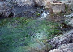Nacimiento rio Huecar