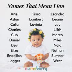 105 Fierce Names That Mean Lion Rare Baby Names, Cool Baby Names, Cute Names, Unique Baby Names, Baby Girl Names, Kid Names, Aesthetic Names, Name Inspiration, Pretty Names