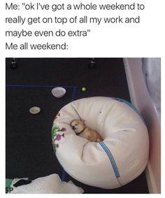 Whole Weekend