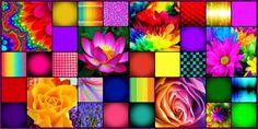 Floral Burst-tile
