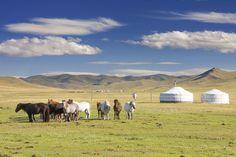 12 gute Gründe, warum Sie mal die Mongolei besuchen sollten
