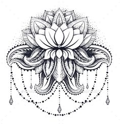Ornamental Lotus