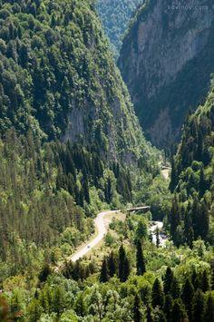 дорога на озеро рица - Поиск в Google | ГОРЫ | Постила